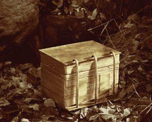Book of Mormon record